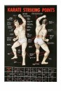 poster Karate Striking Points